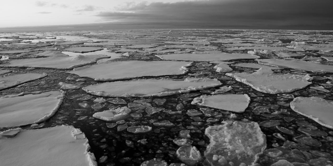 Sea Ice near Svalbard, Copyright Dave Walsh