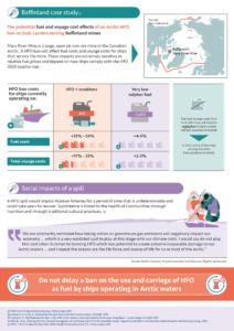 Infographic: Bafflinland Case Study