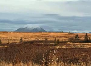 1 Dillingham, Alaska in December 2019.