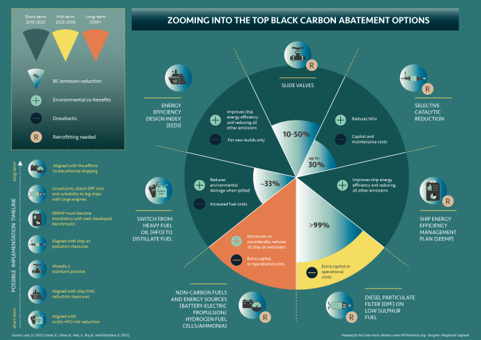 Zooming into the top ten black carbon abatement options